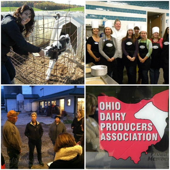 Ohio Dairy Adventure