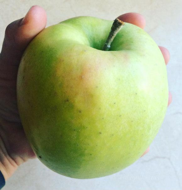 Caramel Apple Squares