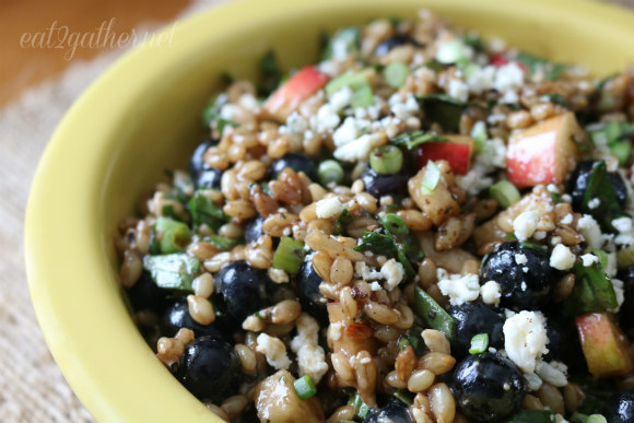 Blueberry Barley and Blue Cheese Salad