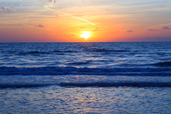 Gulf Coast Coleslaw